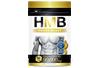 サプリメント・健康食品(healthfood)NGC HMB サプリメントメント
